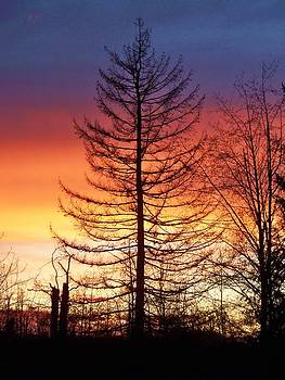 Sunset of Orange and Blue by Marilyn Lyon