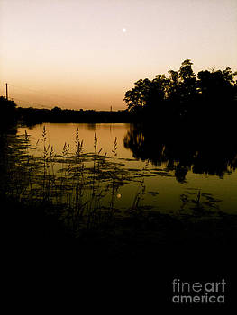 Sunset on the Lake by Trish Hale