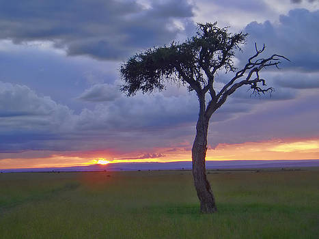 Sunset on the Mara by Elaine Snyder