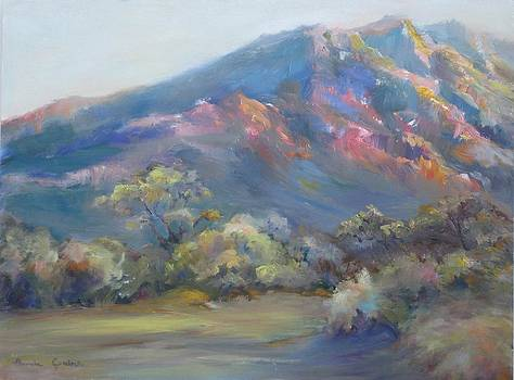 Sunset On The Mountains by Bonnie Goedecke