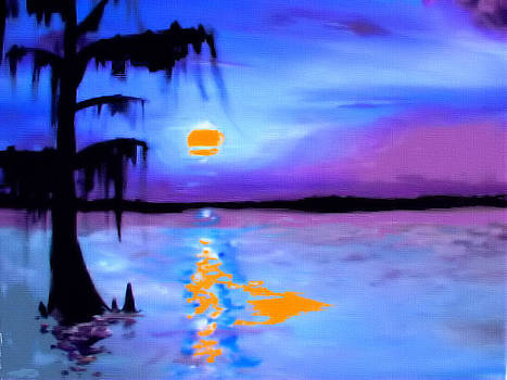 Sunset On The Swamp by Karen Conine