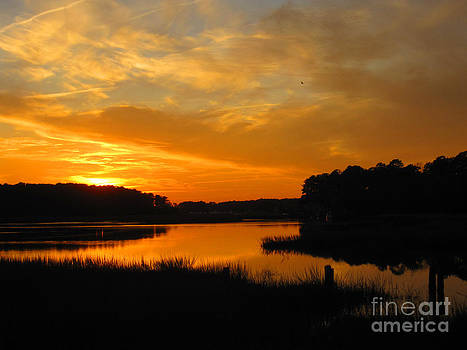 Sunset Over the Calabash River by Julie Bostian