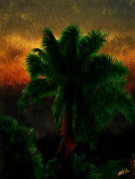 Sunset Palm by Nick Sorbin