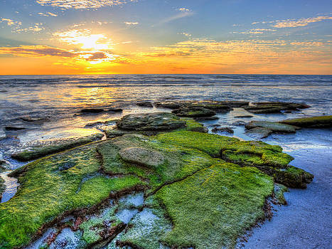 Sunset Siesta Key Rocks by Jenny Ellen Photography