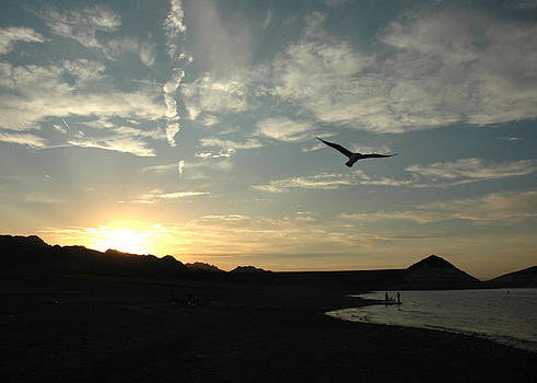 Sunset Soaring by Jonathan Schreiber