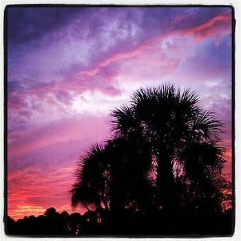 Sunset Tonight by Dustin K Ryan