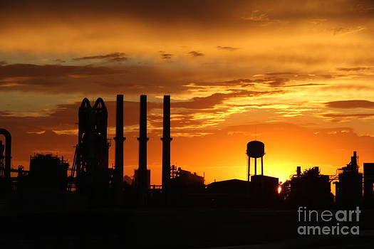 SunSet Tucson by Diane Greco-Lesser