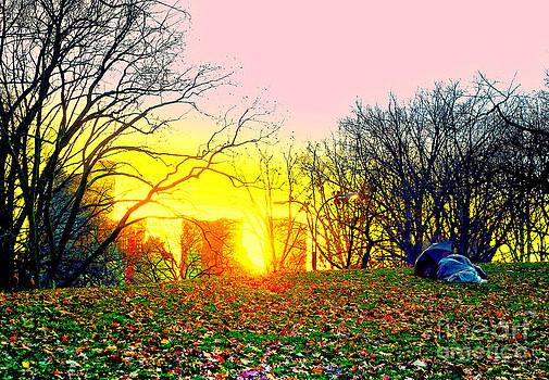 Sunset Winter Approaching by Jeff Landau