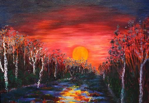 Sunset with Birch Trees by Karin Eisermann