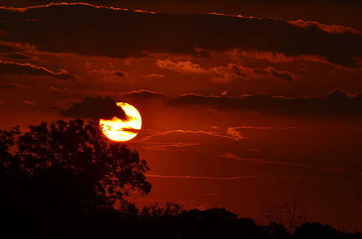Sunsets on Texas by Kelly Kitchens