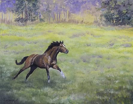 Sunshine Morning Run by Ann Arensmeyer