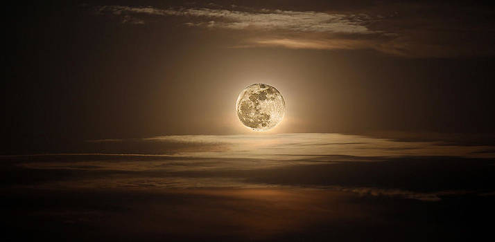 Super Moon Of 2012 by Elizabeth Hart