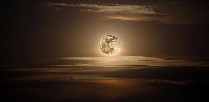 Super Moon Of 2012 by Elizabeth Hart