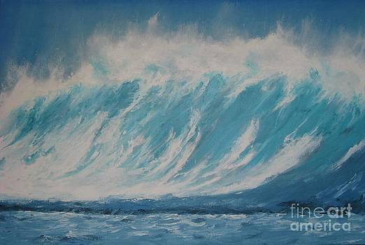 Surf Up by Ronald Tseng