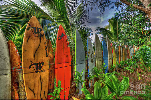 SUrfboard Wall by Steve Nelson