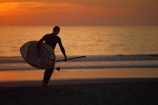 Surfer on the sunset by Ferenc Farago