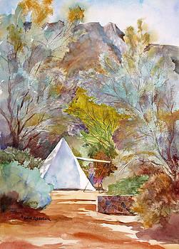 Survey Camp by John Ressler