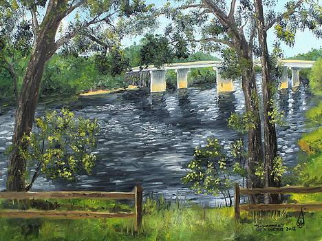 Suwannee by Larry Whitler
