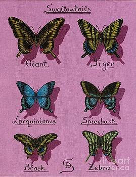 Swallowtails by Dumitru Sandru