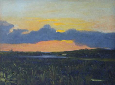 Swampy Sunrise by Linda Krupp