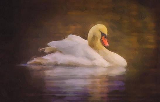 Swan Dream by Jill Balsam