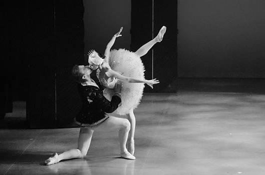 Swan Lake 15 by Cheryl Cencich