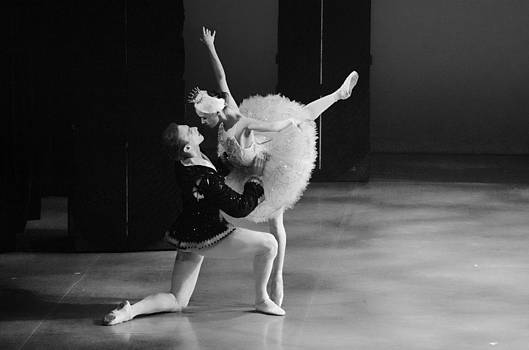 Swan Lake 16 by Cheryl Cencich