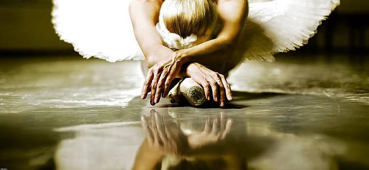Swan Lake by Nikolay Krusser