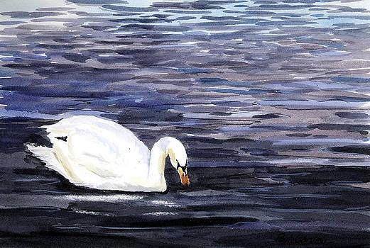 Swan by Paul Gardner