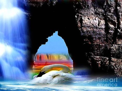 Swan Rainbow Falls RAW by Catherine Herbert