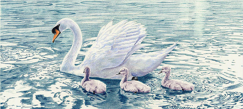 Swan Song by Bev Lewis