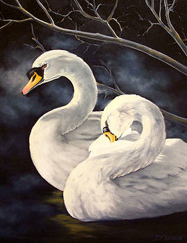 Swans by Donna Francis