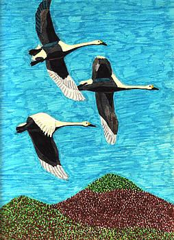 Swans in Flight by Wendy McKennon