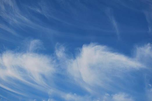 Michelle Cruz - Sweeping Clouds