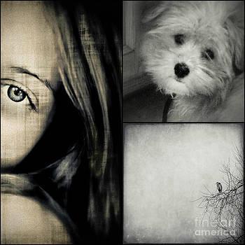 Sweet Dreams by Annie Lemay
