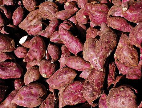 Sweet Potatoes by Michael Clarke JP