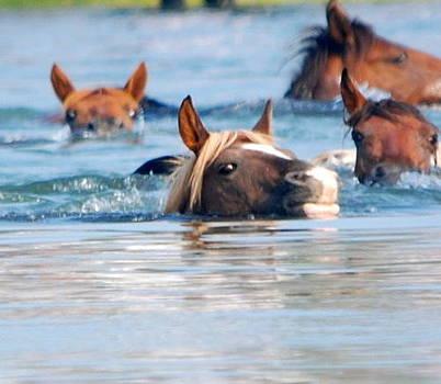 Swim Faster by Lori Hamilton