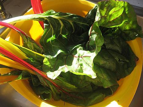 Swiss Chard by Deb Martin-Webster