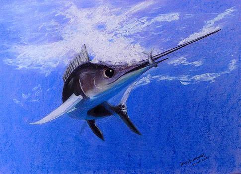 sword Fish by David Hawkes