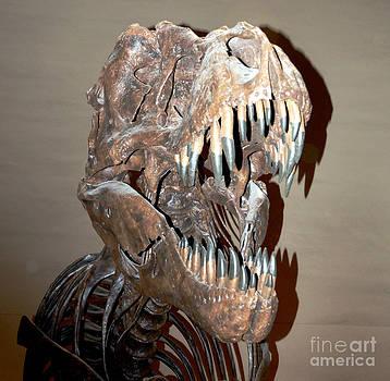 Pravine Chester - T Rex