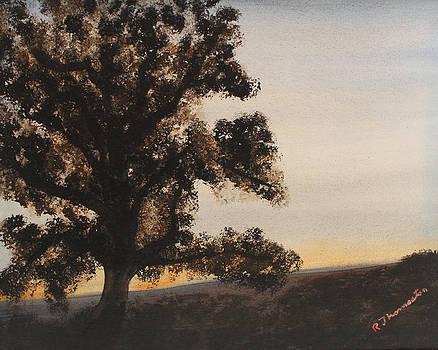 Table Mountain Tree by Robert Thomaston