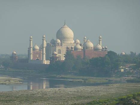 Taj Mahal by Andrea Mendes