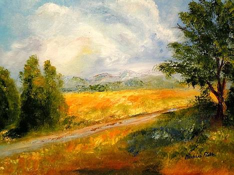 Take Me Home Country Road by Barbara Pirkle