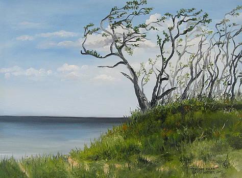 Talbot Island by Larry Whitler