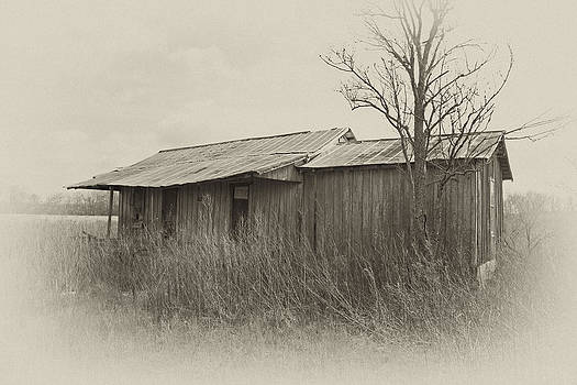 Tallahatchie shack by Russell Christie