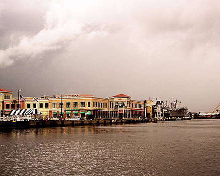 Tampa Waterfront by Dorothy Riley