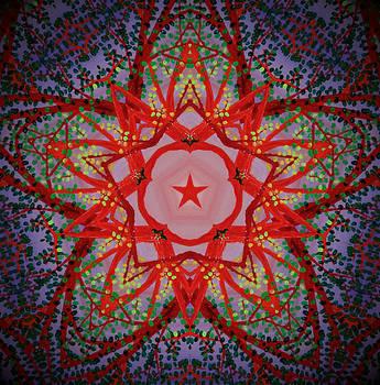 Tangled Kaleidoscope by Heather  Hubb