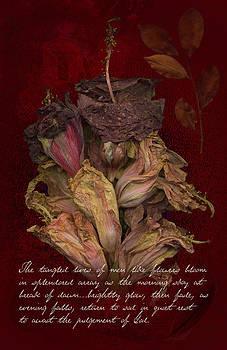 Tangled Lives by Robert Hudnall