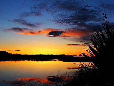 Tarawera River Sunset by Judy Watson