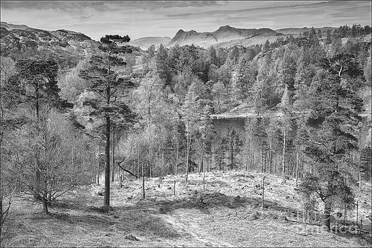Tarn Howes and The Langdales 2 by George Hodlin